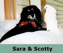 Sara & Scotty